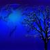 Telgte und die Welt